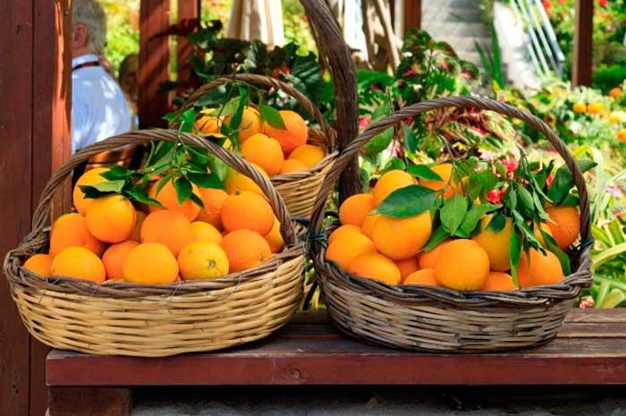 beneficios del aceite esencial de naranja